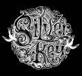 Silver Key image