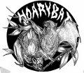 Hoary Bat image