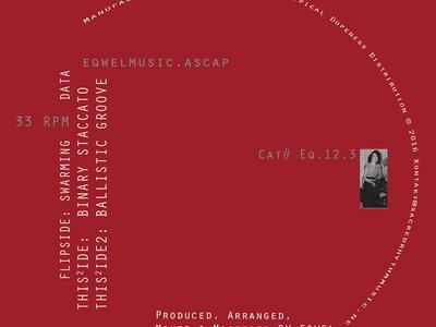 "Eqwel's Algorithmic Measures - 12"" Vinyl Release main photo"