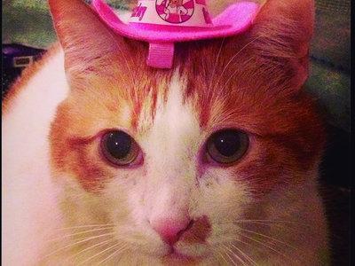 Tiny Pink Clip-On Cowboy Hat main photo