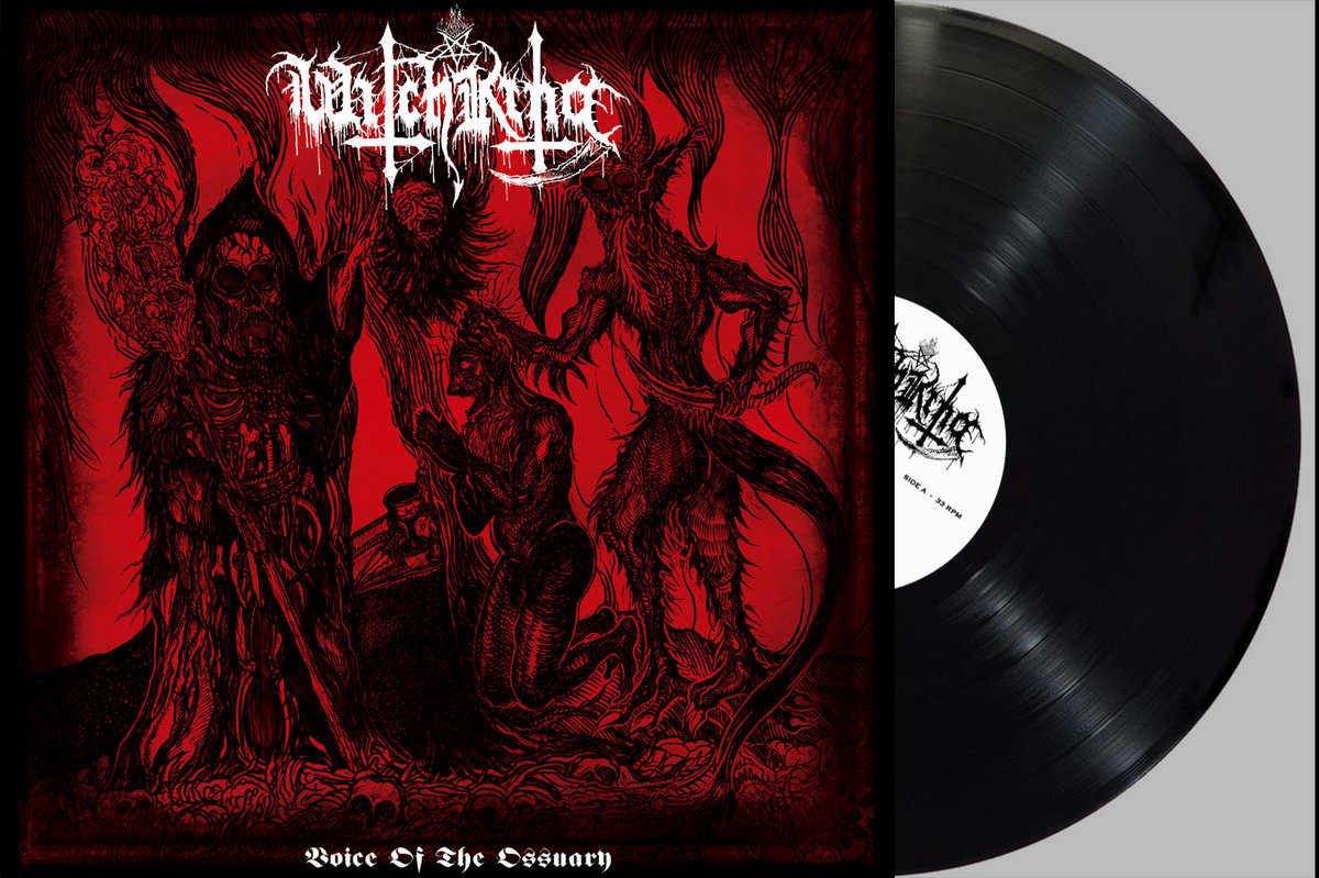 king animal demos vinyl