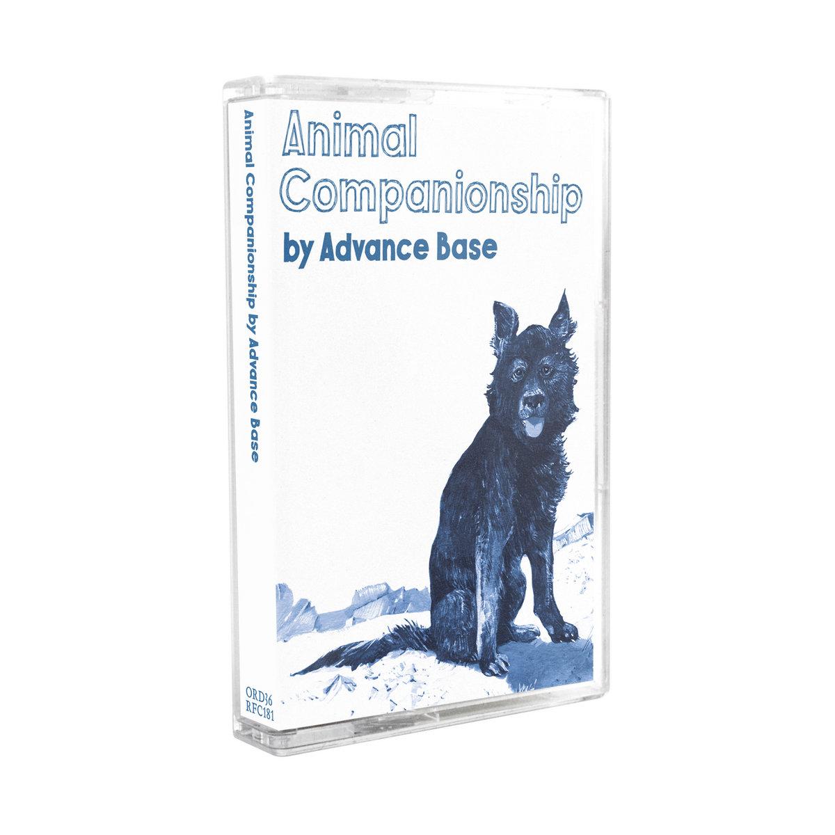 animal companionship advance base