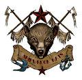 Shipwreck Rats image