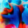 12 Senses image