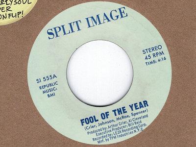 FOOL OF THE YEAR - SPLIT IMAGE main photo