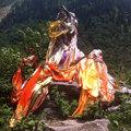 Te Huhu image
