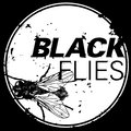 Blackflies image