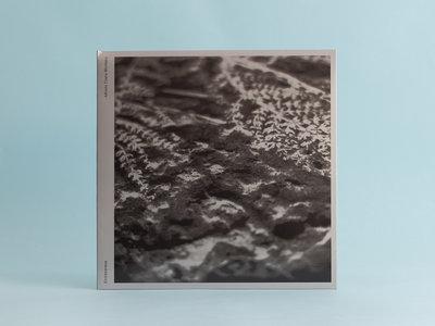 ANM018 Alfredo Costa-Monteiro — Endlessness LP main photo