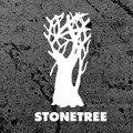 Stonetree Music image