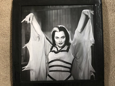 Picture of Lily Munster from To Be Like Lily music video main photo