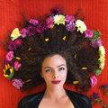Lauren Turk image