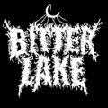 Bitter Lake image