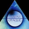 Axxent Opaque image