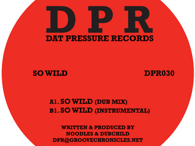 Groove chronicles so wild (2step mix) Vinyl 12' Limited Signed Exclusive To Bandcamp* main photo