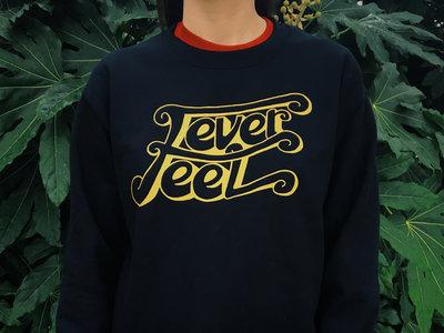 Double Decker Sweatshirt main photo