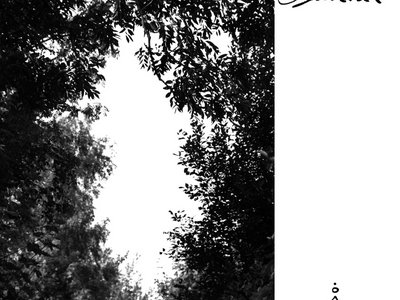 Consider Suicide - Nattmelankoli CD main photo