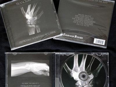 Trancelike Void - Destroying Something Beautiful CD main photo