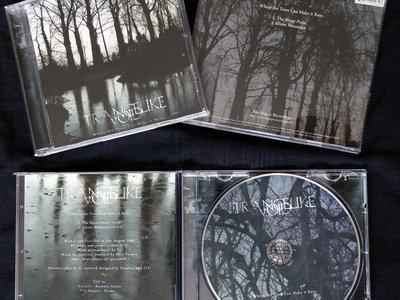 Trancelike Void - Where the Trees Can Make it Rain CD main photo