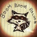 Boom Boom Racoon image