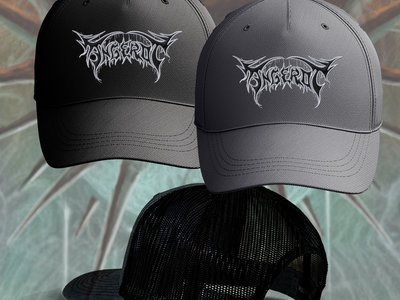 Mesh Back Embroidered Hat main photo