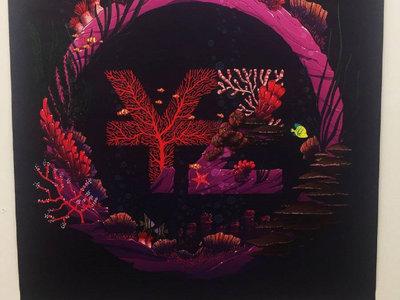 YZ Coral Prints - Large main photo