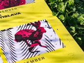 Chasing Rabbits Tour Poster photo