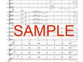 7. Snowflake [Digital PDF Score and Parts] photo