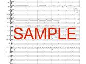 8. Turbulence [Digital PDF Score and Parts] photo