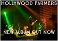 Hollywood Farmers image