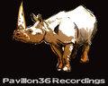 Pavillon36 Recordings image