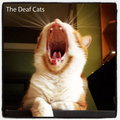 The Deaf Cats image