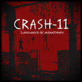 Crash-11 image