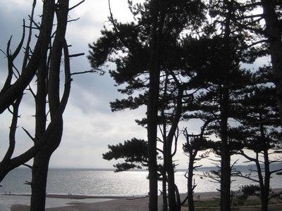 Budleigh Salterton beach on the Jurassic Coast main photo