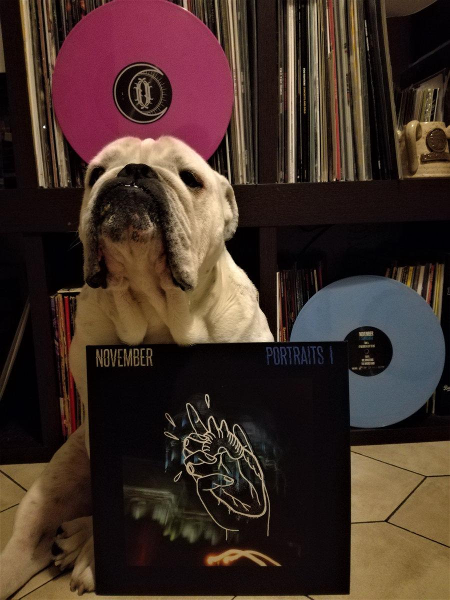 NOVEMBER - PORTRAITS PT1 - [SDR 003] | SLEEPY DOG RECORDS