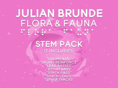 Flora & Fauna - Stem Pack main photo