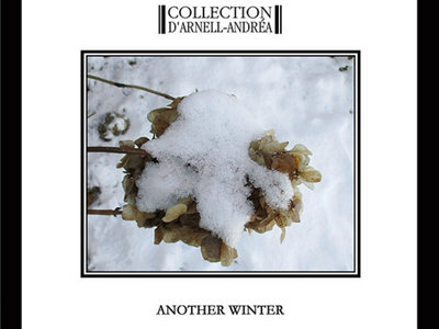 COLLECTION D'ARNELL-ANDRÉA: Another Winter CD main photo