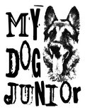 My Dog Junior image