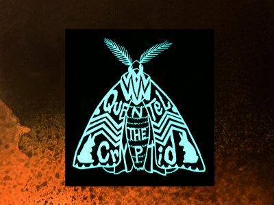 Moth Sticker main photo