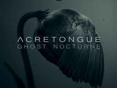 ACRETONGUE: Ghost Nocturne CD Digipak main photo