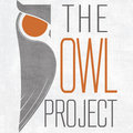 The Owl Project image