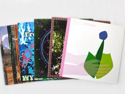 """Any 2 12"""" Vinyl Records main photo"""