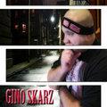 GINO SKARZ image