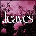 .leaves image