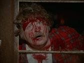 Blood Beat (1982) DVD/BluRay Slip Cover Edition photo