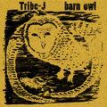 Tribe-J image