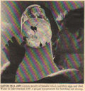 Haunted Clockwork Records image