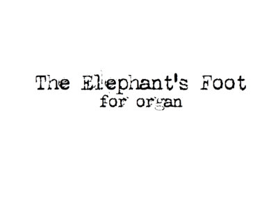 The Elephant's Foot for Organ main photo