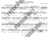 Nonexistent Chimera for Alto Flute photo
