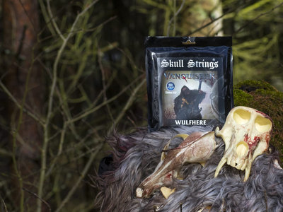Wulfhere's signature Skull Strings (5 strings 45-135ex) main photo