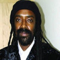 Panafricanist  image
